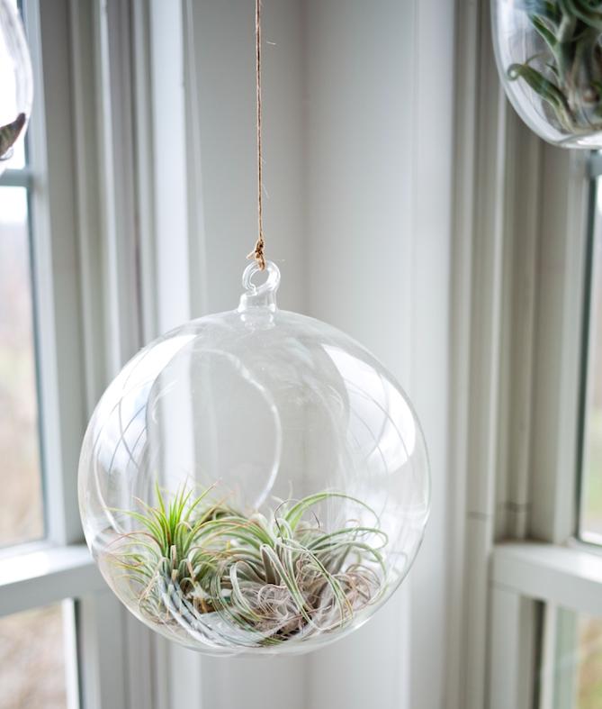 Tendencias de decoración 2017, desde plantas hasta el cobre
