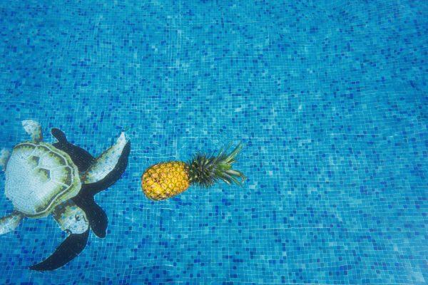 temporada piscina piña