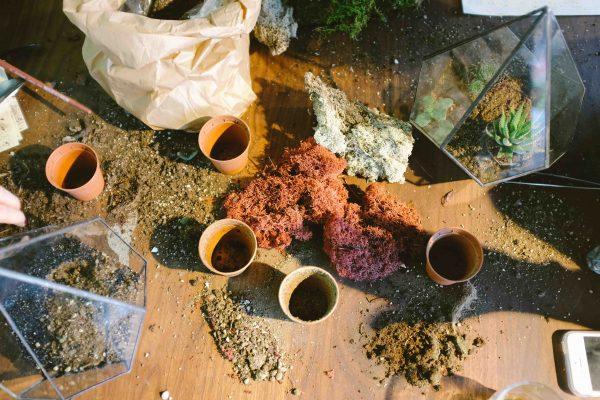 huerto ecológico cristal
