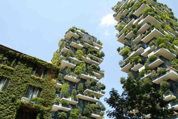 vegetación reforma sostenible