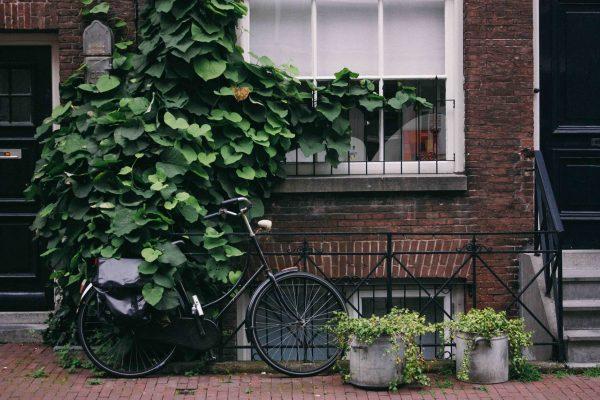 hogar sostenible exterior