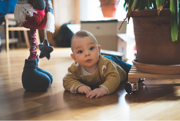 casa segura bebé