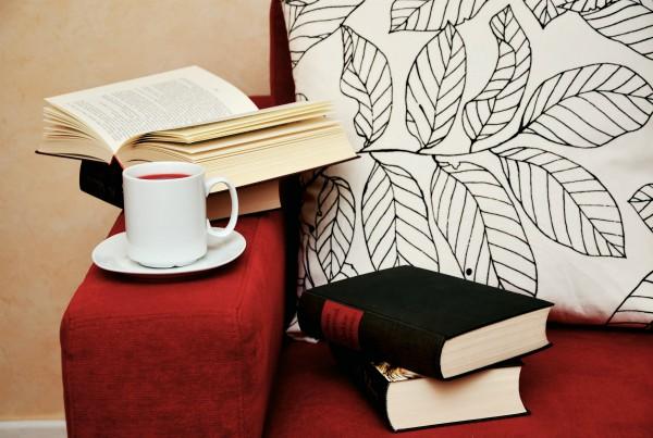 libros renovar estantería